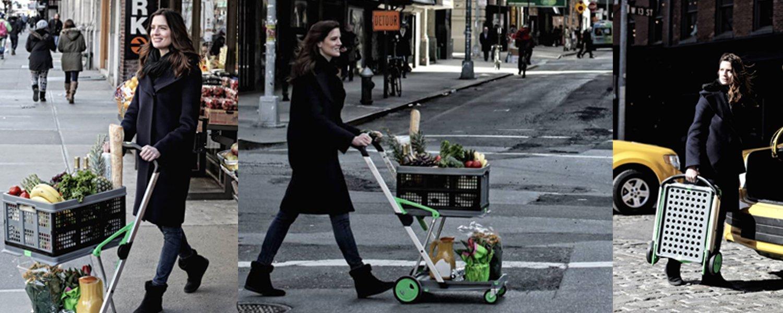 Best Heavy Duty Folding Grocery Shopping Cart Review