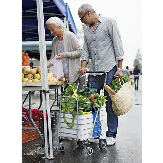 Best Rated Heavy Duty Folding Shopping Carts for Groceries ...